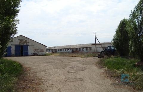 Аренда производственного помещения, Краснодар, Ул. Ленина - Фото 1