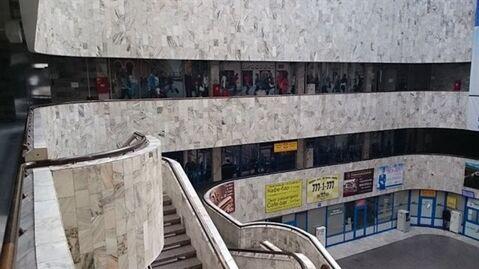 Сдам офисное помещение 216 кв.м, м. Василеостровская - Фото 5