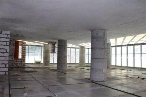 Сдам офисное помещение 500 кв.м, м. Московская - Фото 5