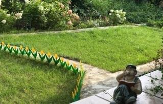Дача, Вишневый сад - Фото 5