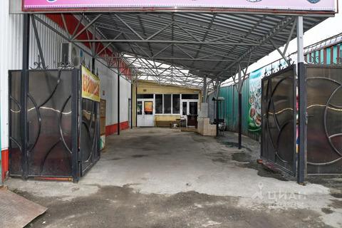 Торговая площадь в Курганская область, Курган ул. Тимофея Невежина, . - Фото 1