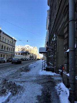 Аренда торгового помещения, м. Чернышевская, Ул. Шпалерная - Фото 1