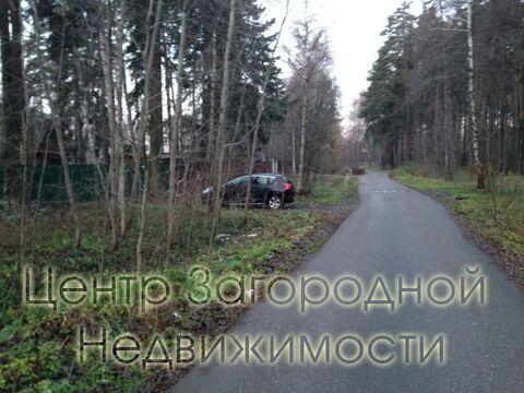 Участок, Щелковское ш, Ярославское ш, 19 км от МКАД, Загорянский п. . - Фото 3