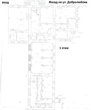 Коммерческая недвижимость, ул. Добролюбова, д.4 - Фото 2