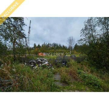Продажа земельного участка 12 соток в п. Шуя (ст. Шуйская) - Фото 3