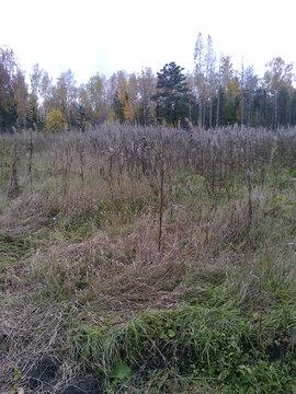 Продам земельный участок под ведение садоводства Рябинино - Фото 2