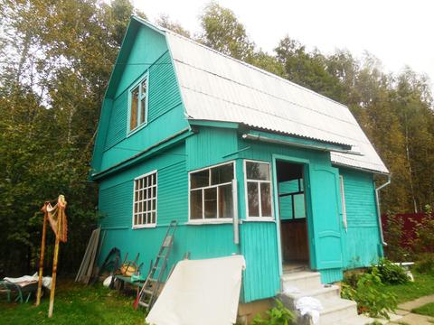 Дача из бревна 65 (кв.м). Летняя кухня + Баня. Участок 6 соток. - Фото 2