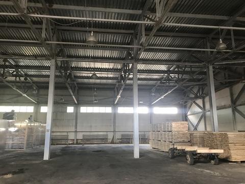 Сдается производственно-складское помещение площадью 970 кв. м. - Фото 4