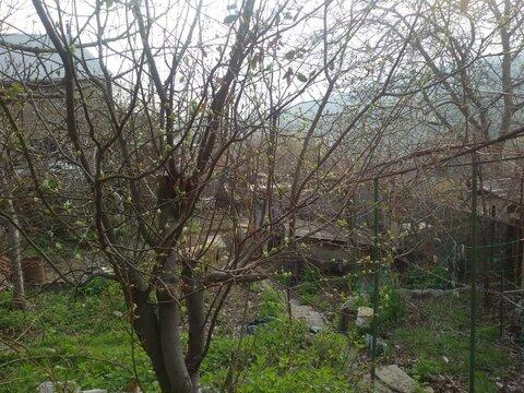 Земельный участок в Ялте пгт. Никита 2.8 сот. - Фото 4