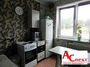 1-к квартира Екатерины Зеленко - Фото 3