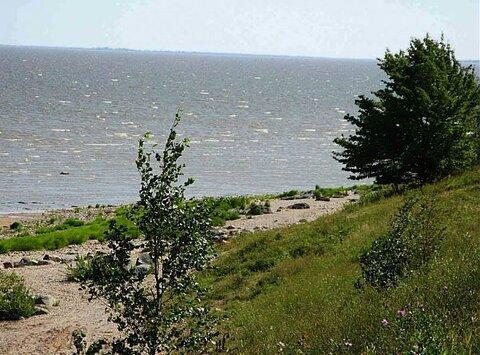 Продам большой участок в д.Устрека у озера Ильмень.