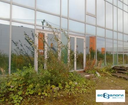 Продажа псн, Новосаратовка, Всеволожский район - Фото 3