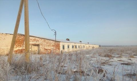 Аренда псн, Ленино, Касимовский район, Колхозная - Фото 2