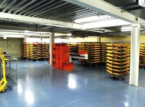 Продажа современного хлебозавода 4970 м2 в Краснознаменском - Фото 4