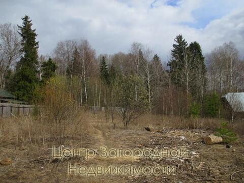 Участок, Ярославское ш, 55 км от МКАД, Зубцово д. Ярославское шоссе, . - Фото 3