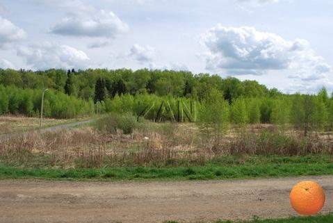 Продается участок, Дмитровское шоссе, 40 км от МКАД - Фото 1