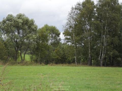 Участок, Ярославское ш, 35 км от МКАД, Цернское д, д.Цернское. . - Фото 1