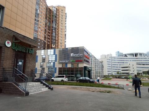 Видовая двухкомнатная квартира в Приморском районе - Фото 2