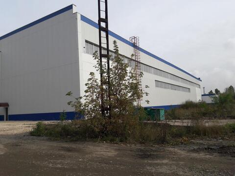 Аренда торгового помещения, Липецк, Ул. Алмазная - Фото 5