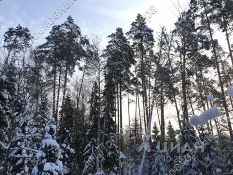 Участок в Московская область, Одинцовский городской округ, д. Сивково . - Фото 2