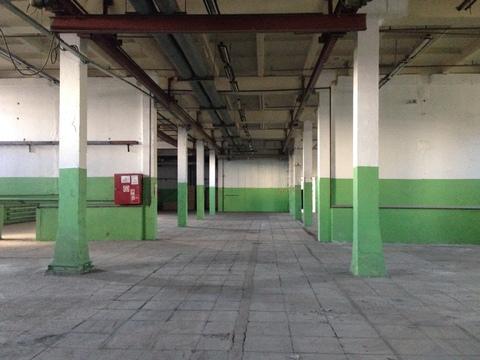 Аренда производственного помещения 1300 кв.м. в Зеленограде - Фото 4