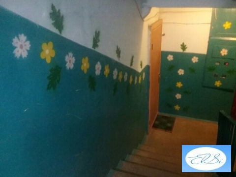 2 комнатная квартира брежневка, дашково-песочня, ул.тимакова д.24к1 - Фото 4