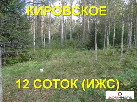Участок 12 соток в д. Кировское - Фото 1