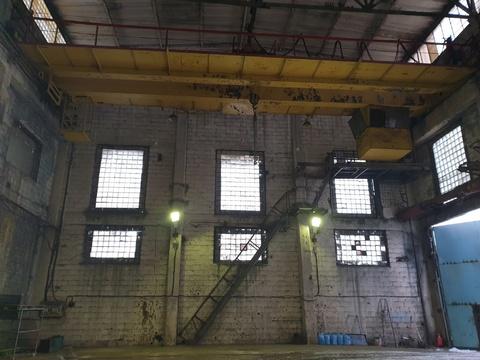 Сдам склад с кран балкой и жд путями - Фото 1