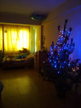 Продажа квартиры, Сочи, Ул. Чехова - Фото 3