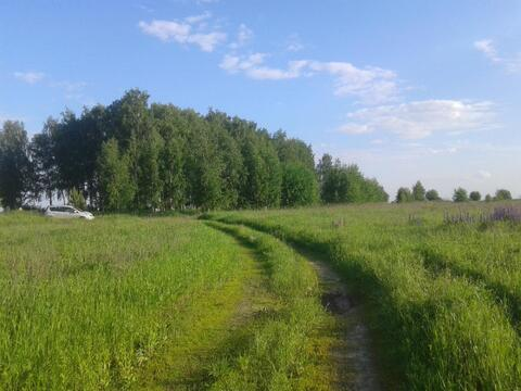 Земельный участок 15 сот. д.Красный Восход - Фото 4