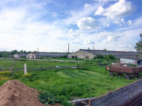 Продается здание молочного комплекса на 1000 доильных коров - Фото 5
