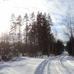 Продам зем.участок в Кротово(Приозерский р-н) - Фото 3