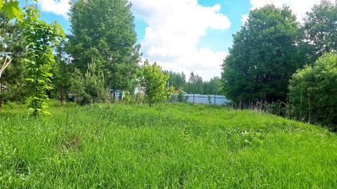17 соток наедине с природой, д.Горки, Заокский р-он, рядом лес и р.Ока - Фото 4