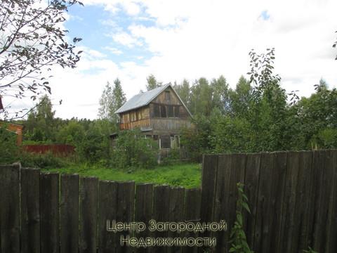 Участок, Ярославское ш, 46 км от МКАД, Красноармейск. Ярославское . - Фото 1