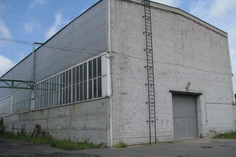 Сдам производственно-складское помещение 520 кв.м. - Фото 2