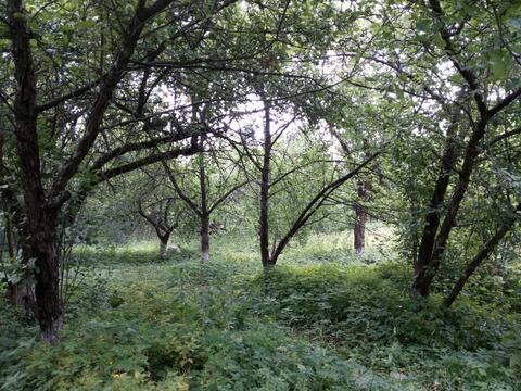 Участок 12 сот. , Щелковское ш, 15 км. от МКАД. - Фото 1