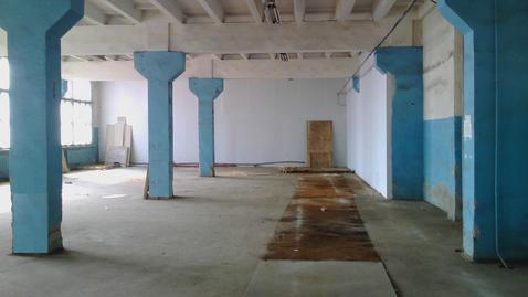 Сдам производственно-складское помещение 2600 кв.м. - Фото 5