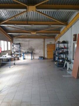 Сдам складское помещение 1000 кв.м, м. Парнас - Фото 2