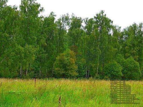 Земельный участок 20 соток в кп Бариново-парк - Фото 4