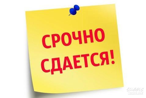 Сдам торговое помещение пр. Красноармейский