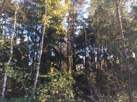 Предлагаем земельный участок площадью 15 соток в д.Маслово около . - Фото 3
