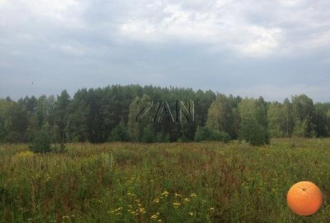 Продается участок, Горьковское шоссе, 240 км от МКАД - Фото 2