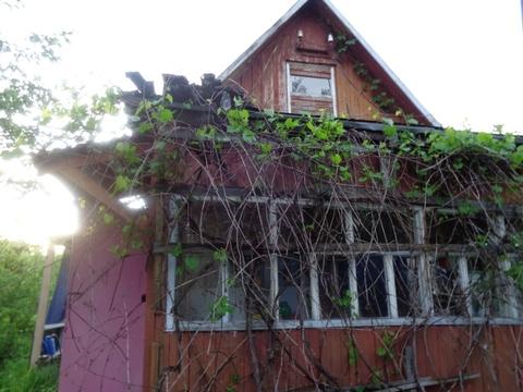 Дача Дроздово 12 соток - Фото 1