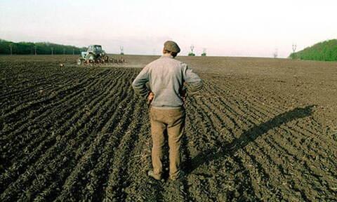 Фермерский участок площадью 57 га, с. Приволжское