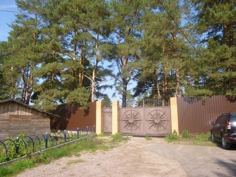Участок 85 соток на первой линии реки Волга со всеми коммуникациями. - Фото 3