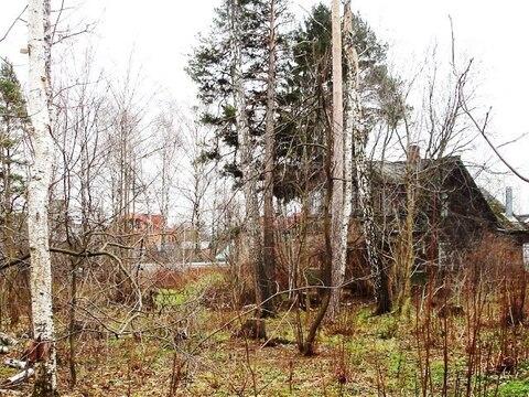 Лесной участок 17соток в пос. Загорянский, Ярославское ш. 14км от МКАД - Фото 2