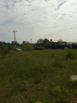 Земельный участок в г. Светлогорск - Фото 4