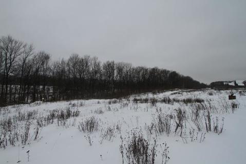 Продается участок 15с. д. Кромино, 45 км от МКАД - Фото 3