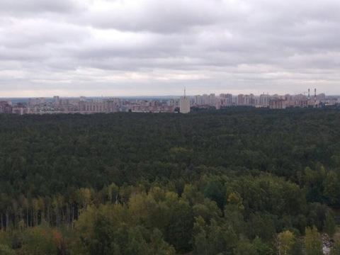 Продажа квартиры, м. Озерки, Ул. Лиственная - Фото 2