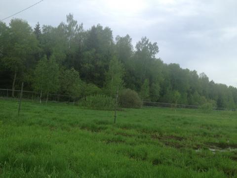 Земельный участок рядом с дер.Луговая - Фото 5
